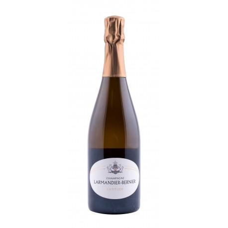 Champagne AOC - Domaine Larmandier-Bernier - Extra-Brut Latitude